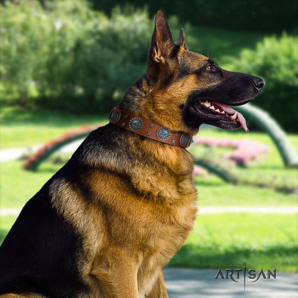 German-Shepherd best quality full grain leather collar with decorations for your canine