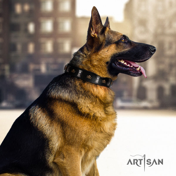 German Shepherd exceptional natural genuine leather collar with adornments for your four-legged friend