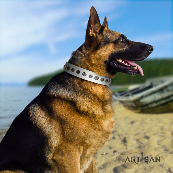 German Shepherd stunning full grain natural leather collar with adornments for your doggie