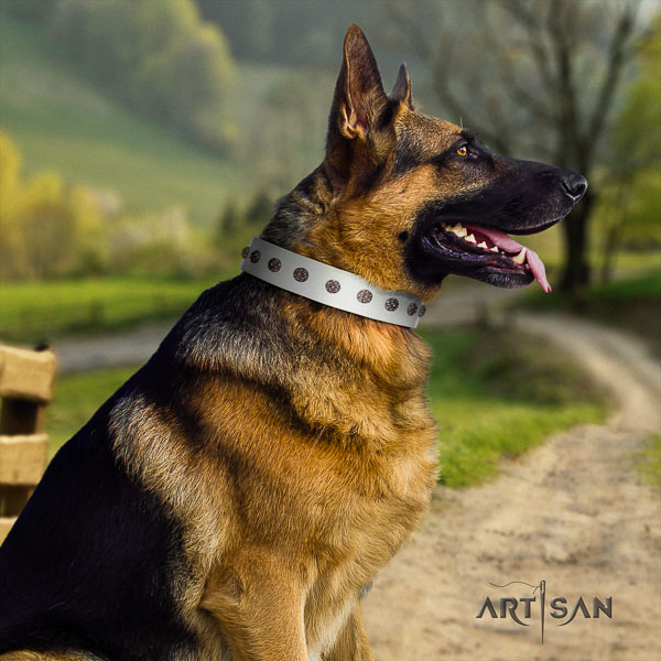 German Shepherd convenient leather collar with embellishments for your four-legged friend