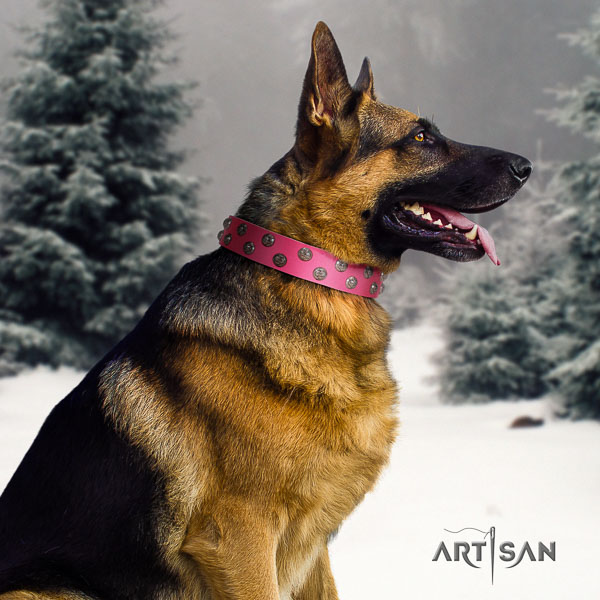 German-Shepherd top notch full grain natural leather collar with adornments for your four-legged friend