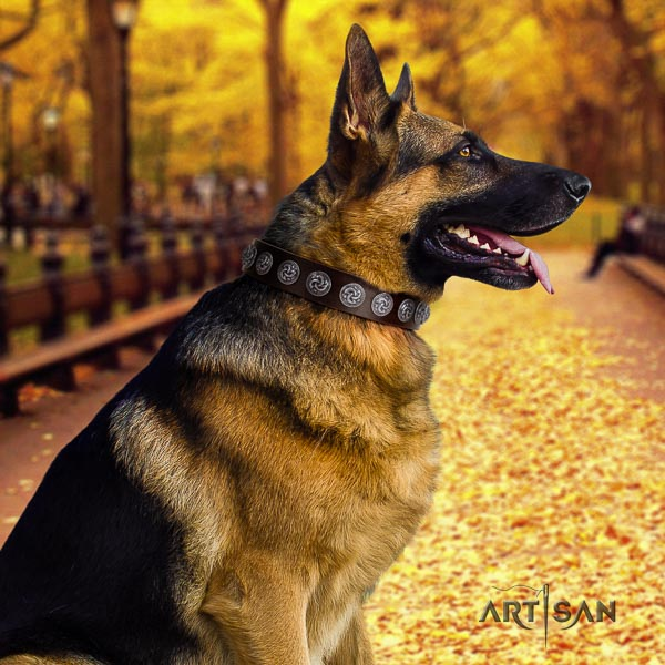 German-Shepherd fashionable natural genuine leather collar with adornments for your four-legged friend