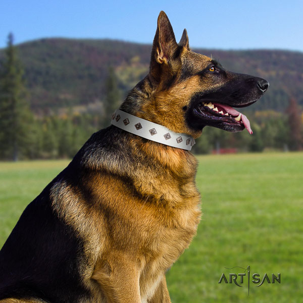 German-Shepherd handmade full grain leather collar with studs for your four-legged friend