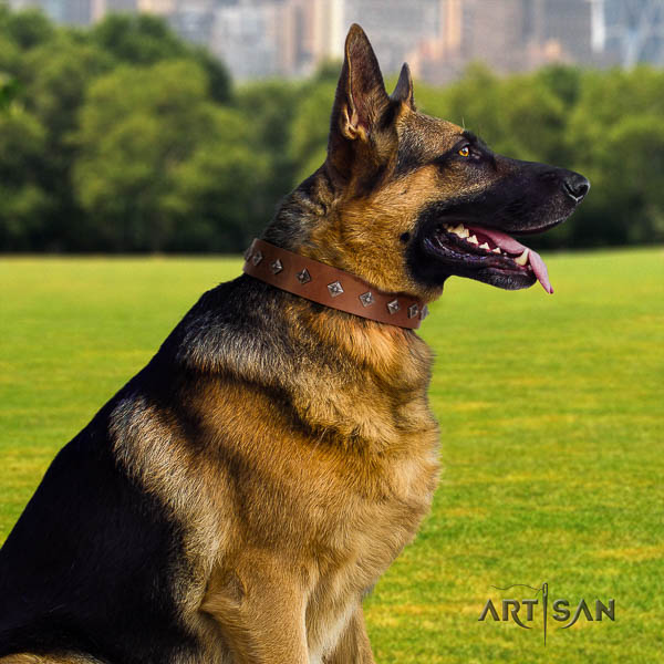 German Shepherd awesome full grain natural leather collar with adornments for your four-legged friend