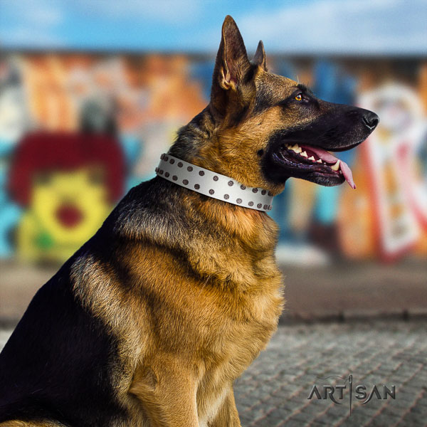 German-Shepherd top quality full grain genuine leather collar with adornments for your pet