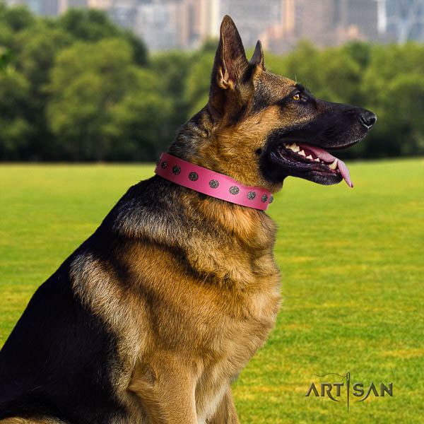 German Shepherd amazing natural genuine leather collar with decorations for your four-legged friend