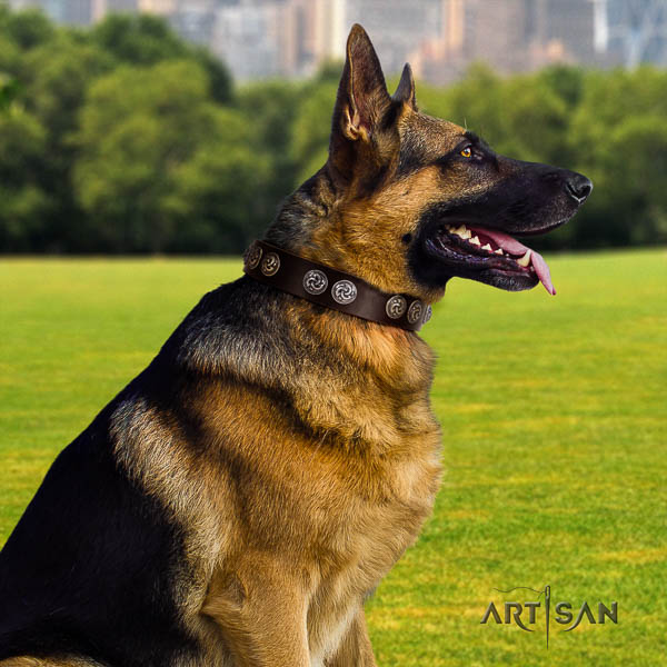 German Shepherd impressive full grain leather collar with decorations for your four-legged friend