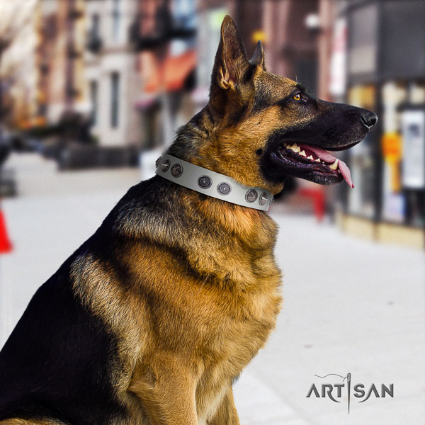 German Shepherd unique genuine leather collar with studs for your dog
