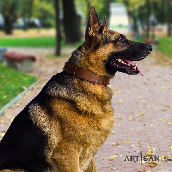 German-Shepherd significant full grain leather collar with studs for your four-legged friend