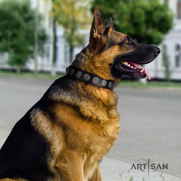 German Shepherd convenient genuine leather collar with studs for your four-legged friend
