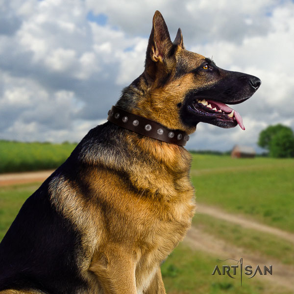 German-Shepherd designer full grain natural leather collar with adornments for your dog