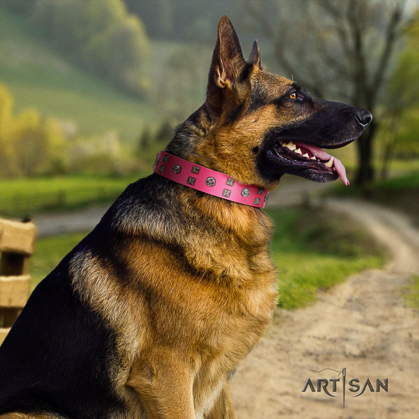 German-Shepherd best quality full grain natural leather collar with adornments for your four-legged friend