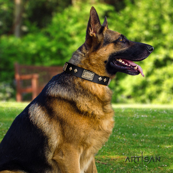 German Shepherd perfect fit collar with stylish decorations for your doggie