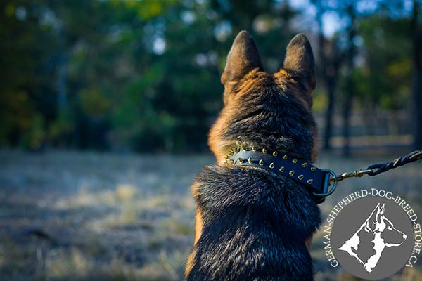 German-Shepherd black leather collar adjustable  with traditional buckle for walking
