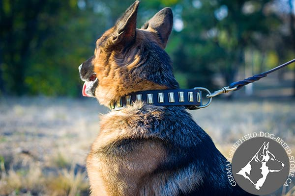 German Shepherd black leather collar of genuine materials decorated with plates for walking