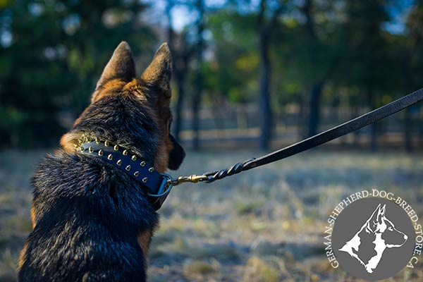 German-Shepherd leather collar of classy design decorated with spikes for stylish walks