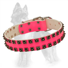 Studded Leather Dog Collar of Bright Pink Color
