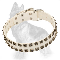 Studded Leather Dog Collar of White Color
