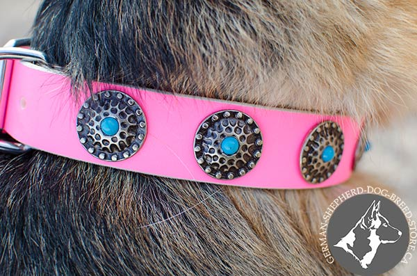 Pink Dog Collar with Fancy Conchos with Tiny Blue Stones