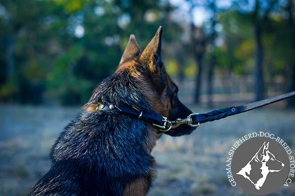 Fashionable Dog Collar with Adjustable  Buckle and Strong D-ring