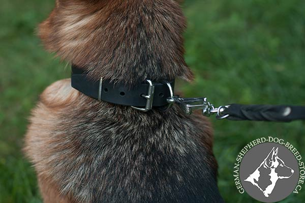High-quality Leather Dog Collar with Nickel-plated Fittings