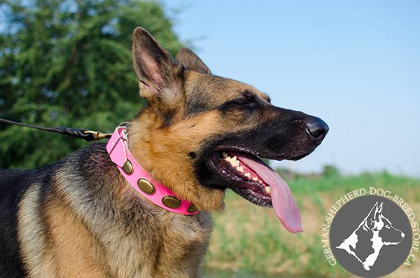 Stylish Leather German-Shepherd Collar in Bright Pink