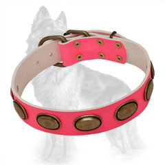 Pink Leather Dog Collar Decorated with Vintage Oval Brass Plates