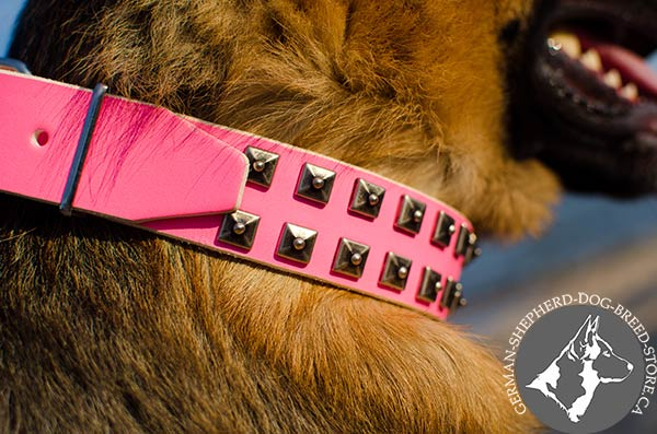 Fancy Pink Leather Dog Collar with Antiqued Square Studs