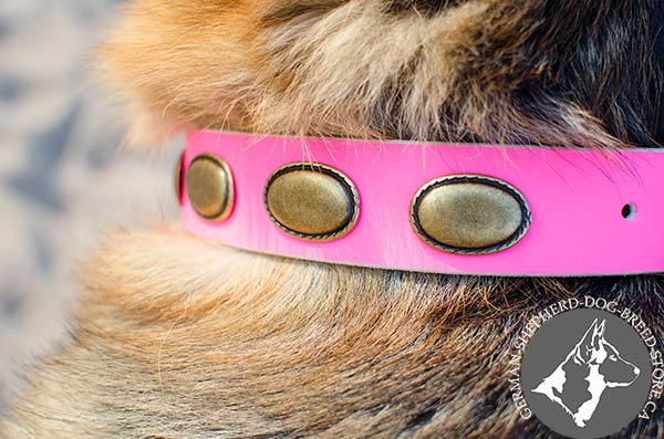 Pink German-Shepherd Collar with Large Oval Plates