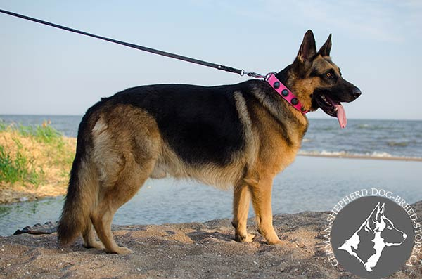 Excellent Design Pink Leather Collar for German Shepherd