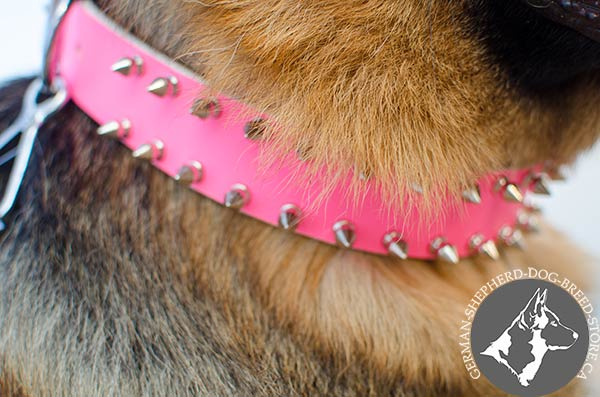 Glamorous Pink German-Shepherd Collar with Proportional Spikes