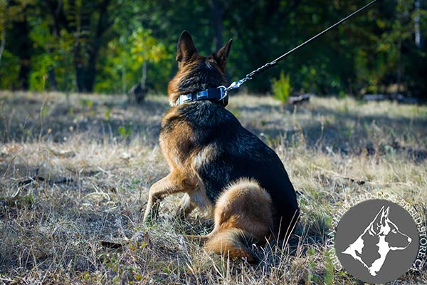 Reliable Leather German Shepherd Collar with Non-corrosive Hardware