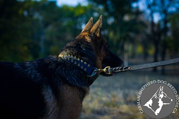 Spiked Leather German-Shepherd Collar for Best Control