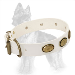 White Buckled Leather Dog Collar Equipped with Brass Fittings