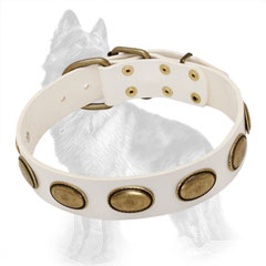 White Leather Dog Collar Decorated with Vintage Oval Brass Plates