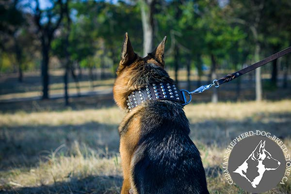 Adjustable Wide German Shepherd Collar with Rust-proof Hardware