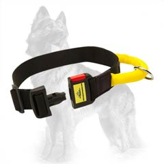 German Shepherd Nylon Collar