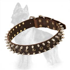 German Shepherd Collar With Spikes And Studs