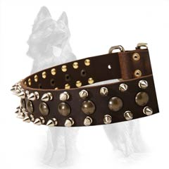 German Shepherd Collar With Nickel Plated Spikes