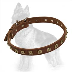 German-Shepherd Brass Studded Collar
