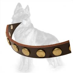 German Shepherd Studded Leather Collar