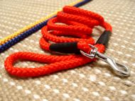Cord nylon dog leash