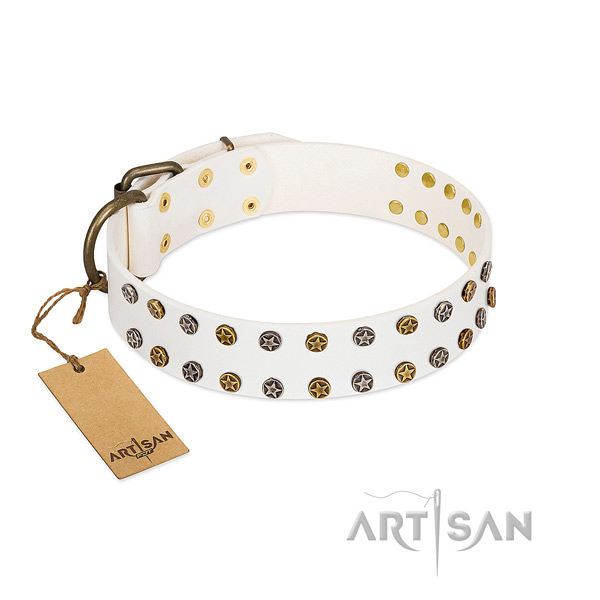 Fashionable leather dog collar with reliable adornments