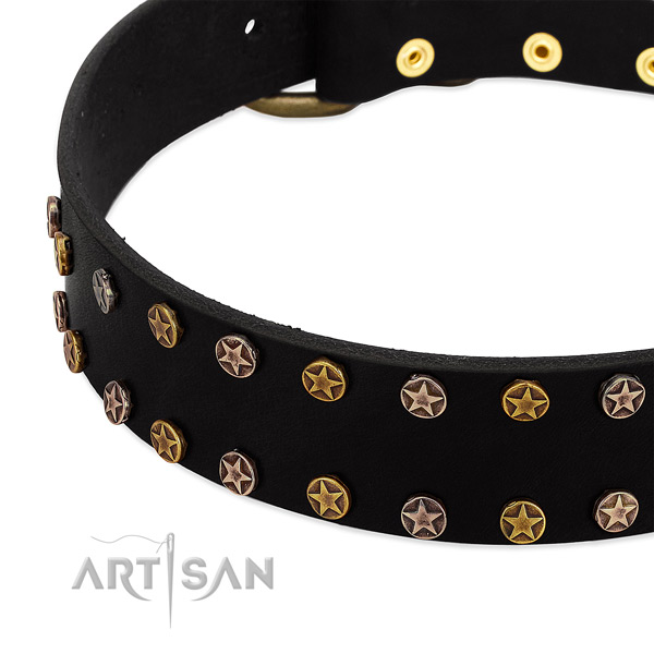 Inimitable adornments on full grain leather collar for your canine