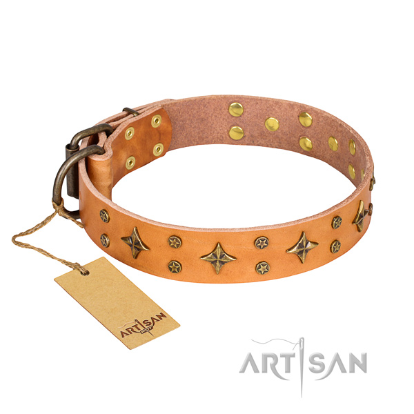 Handy use dog collar of top quality leather with studs