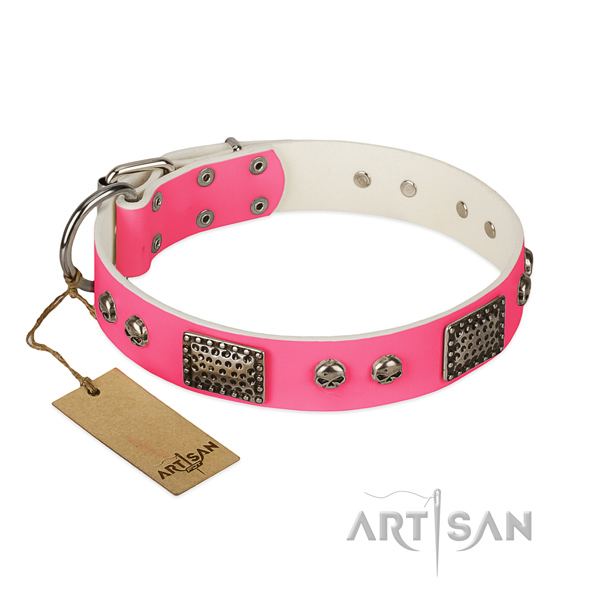 Easy to adjust full grain natural leather dog collar for walking your four-legged friend