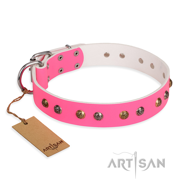 Easy wearing extraordinary dog collar with rust resistant buckle