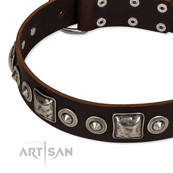 Full grain leather dog collar made of top rate material with studs