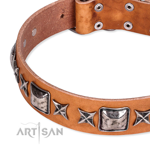 Handy use studded dog collar of top quality full grain genuine leather