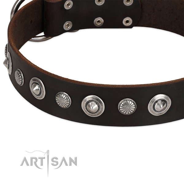 Exceptional adorned dog collar of fine quality full grain leather